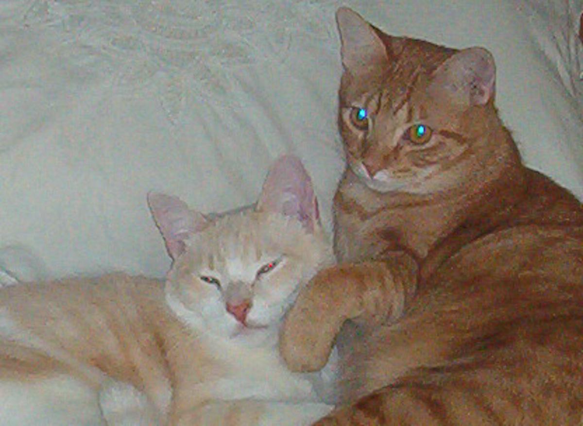 Fred & Barney